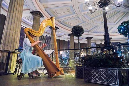 RTR harpist compressed